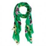 blogshots-scarf